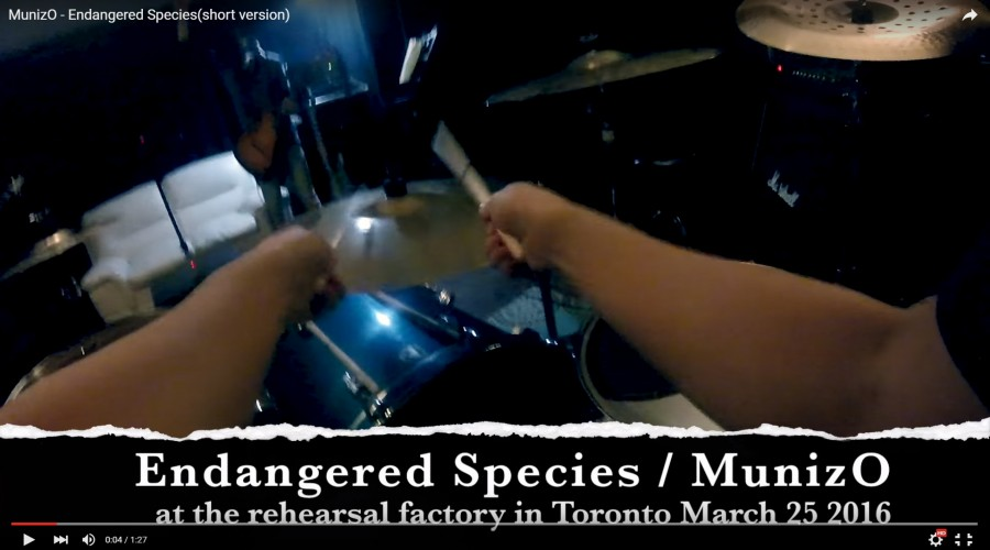 """Endangered Species"" Short Version Music Video"